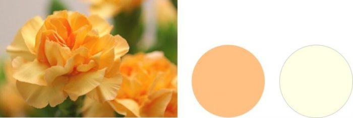 パーソナルカラー サマー オレンジ