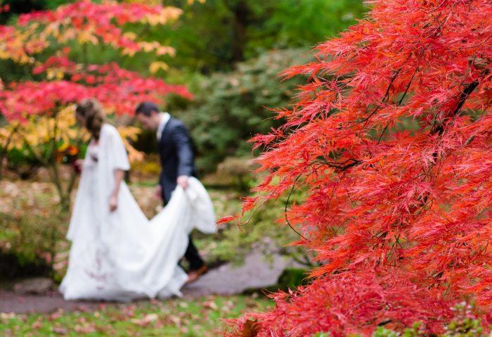 結婚式 節約 秋 季節